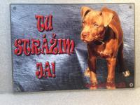Tabuľky pozor pes