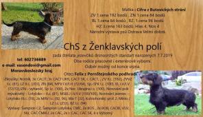 ChS z Ženklavských polí
