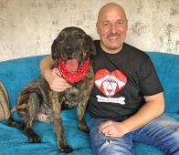 KIM - Labrador x 32 kg - kastrovaný pes 9 let