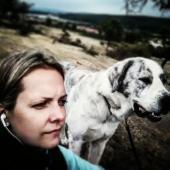 Daruji Středoasijského pasteveckého psa