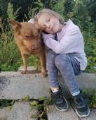 zlatíčko Reddog