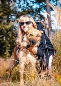 REXO - kříženec - pes cca 4 roky