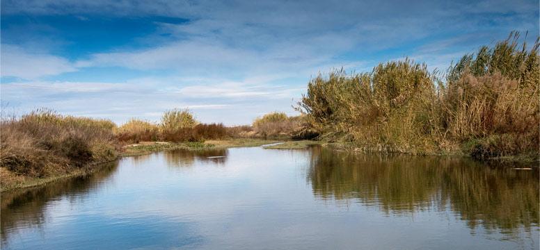 Řeka Aire