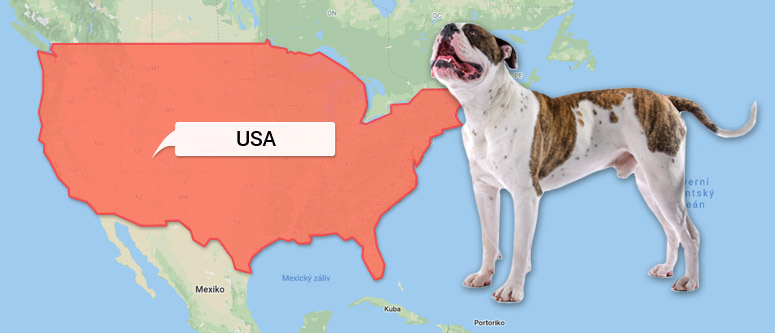 Americký buldok - Mapa Ameriky