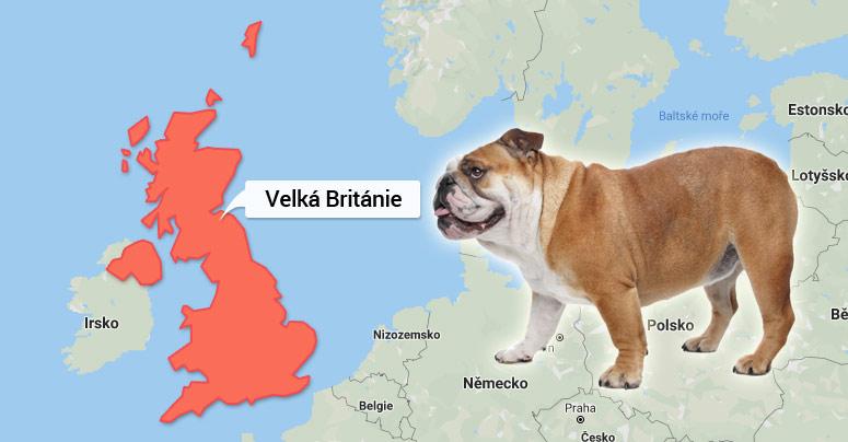 Mapa Británie - Anglický buldok