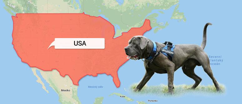 Bandog - mapa USA