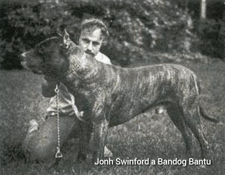 Jonh Swinford a jeho Bandog Bantu