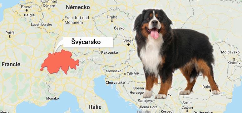 Mapa Švýcarska: Bernský salašnický pes