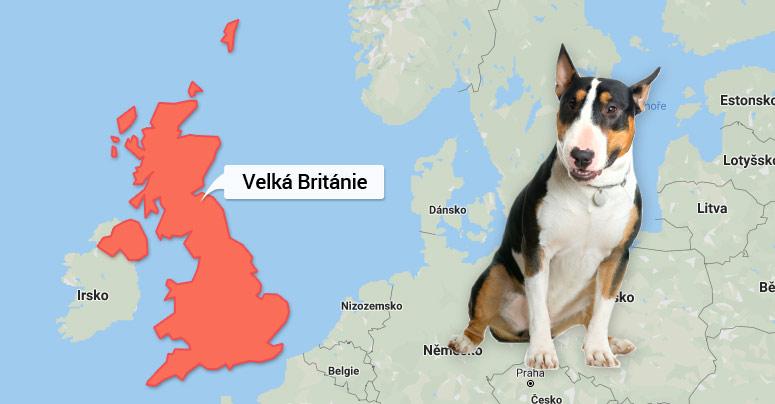 Mapa Velké Británie - Bulteriér