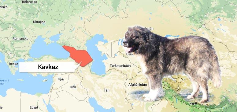 Mapa Kavkaz - původ Kavkazského pasteveckého psa