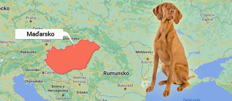 Mapa Maďarsko - Maďarský ohař krátkosrstý