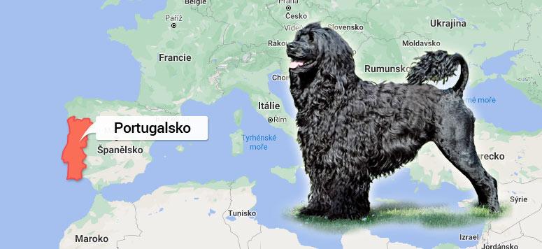 Mapa Portugalsko - Portugalský vodní pes