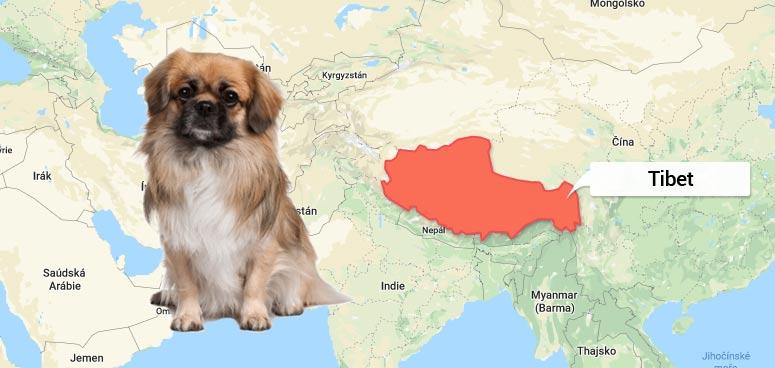 Mapa Tibetu - Tibetský španěl