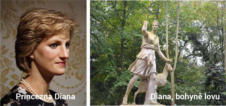 Diana - psí jména na WEBFORDOG